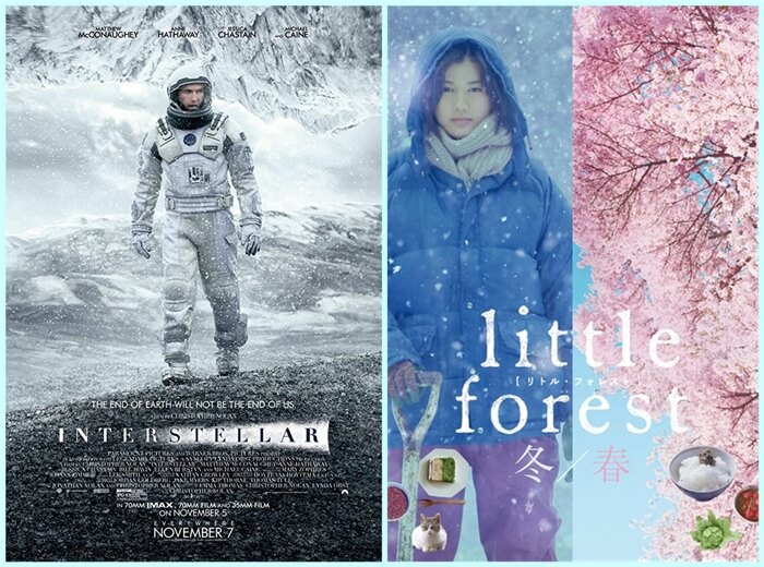 Poster - Interstellar+Little Forest